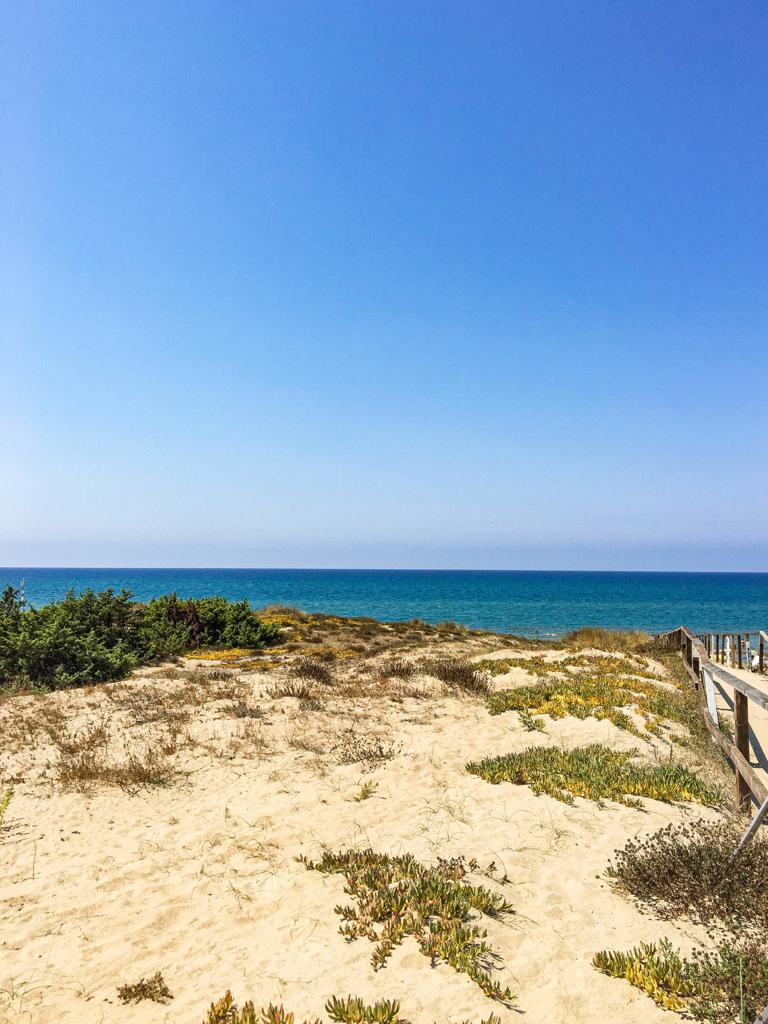 The best things to do in Circeo National Park - Lazio beaches Sabaudia