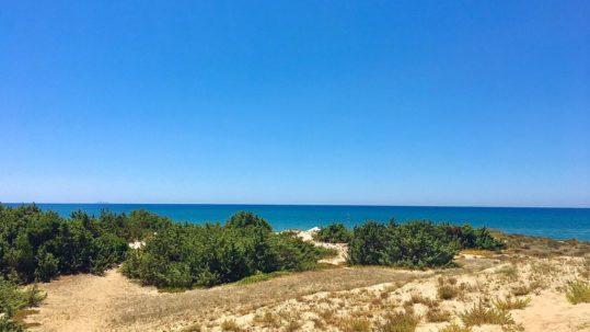 Circeo beach Sabaudia