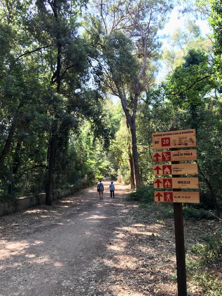 Sentieri nella foresta - Cosa vedere al Parco Nazionale del Circeo