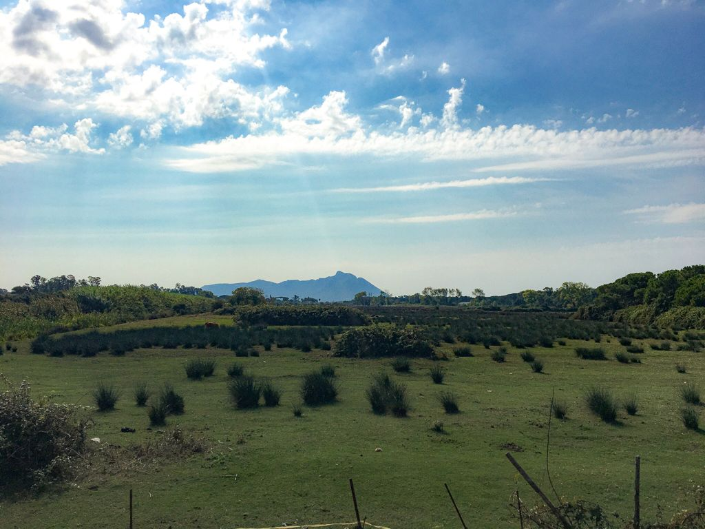area pianeggiante verde con monte Circeo sullo sfondo