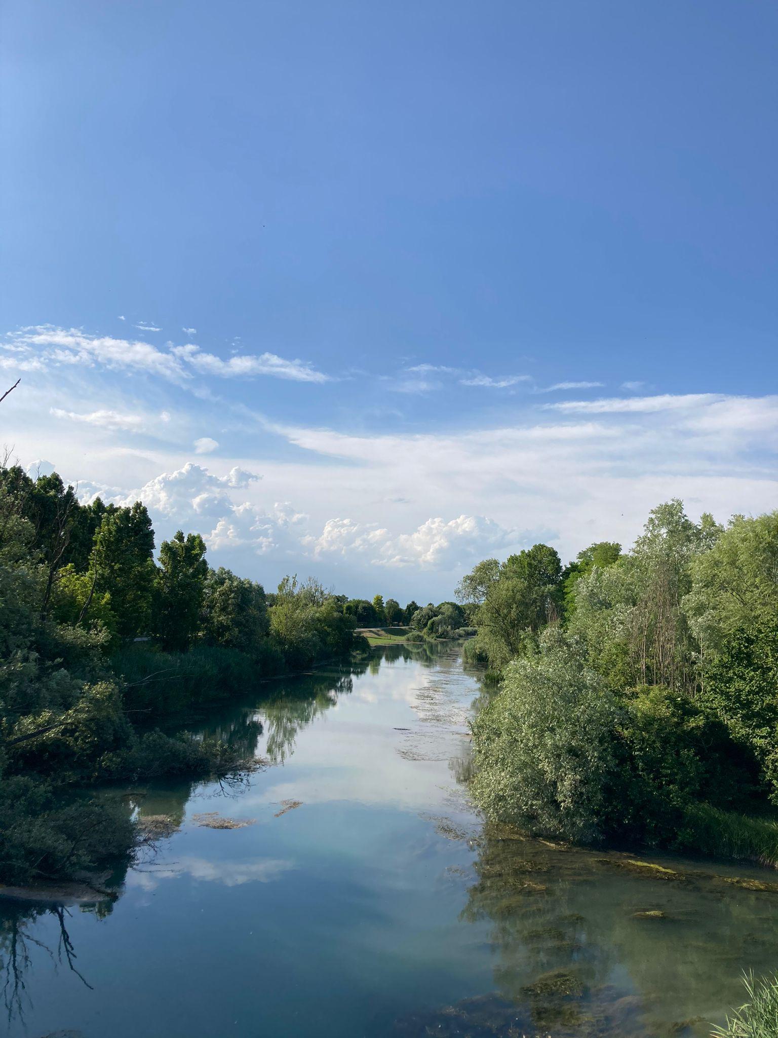 panorama del fiume Piave circondato da vegetazione rigogliosa e cielo azzurro
